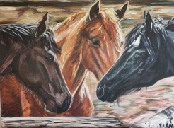 Large Acrylic Equine - Equid Collection