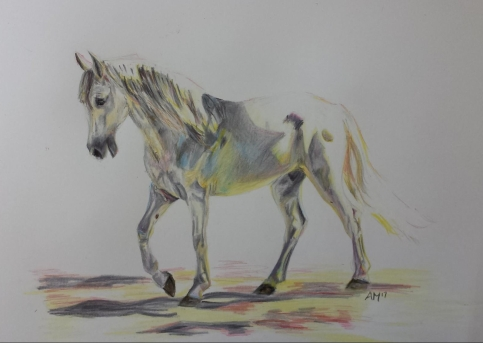 'Walk in the Light' Pencil Equine - Equus Collection