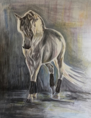 'Shine' Pencil Equine - Equus Collection