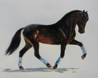 'Lord of the Dance' Pencil Equine - Equus Collection