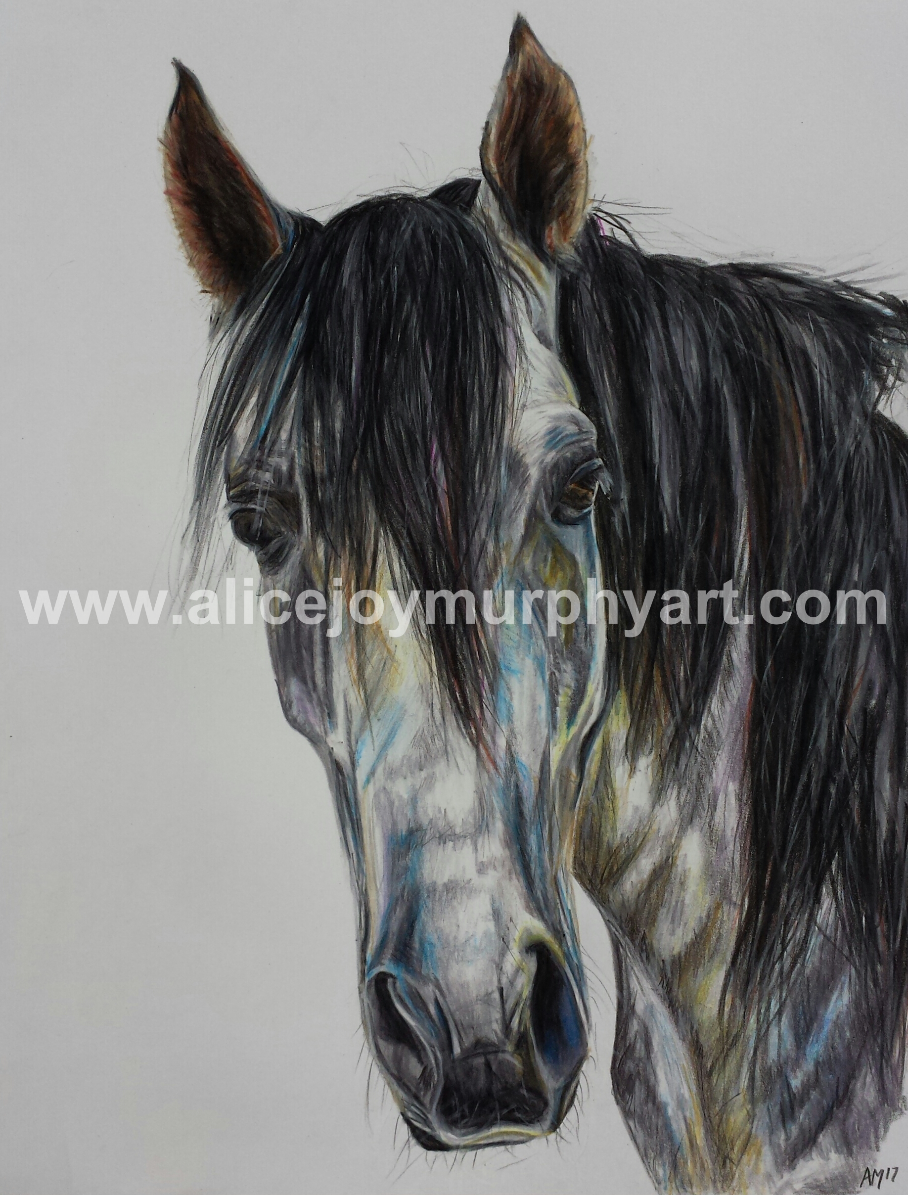 shadowfax watermark